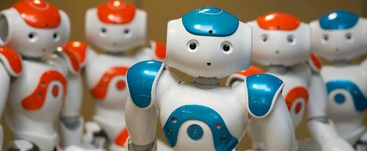 Роботы будут учиться вместе с детьми в австралийских школах | Lafox.Net