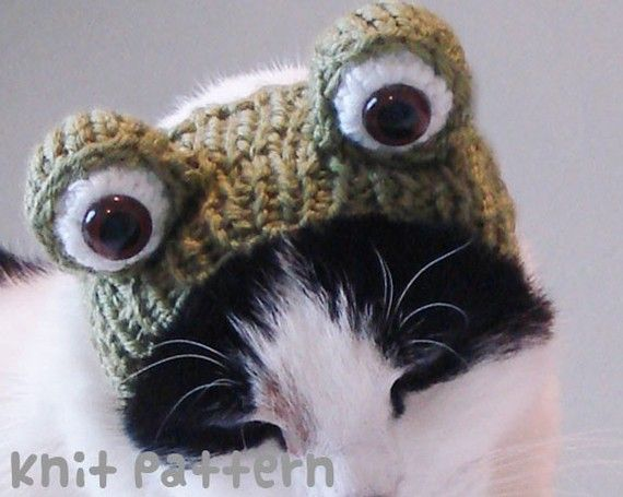 Knitting Pattern For Small Dog Hat : knitting pattern - santa claus pet hat - cat christmas costume knit a?