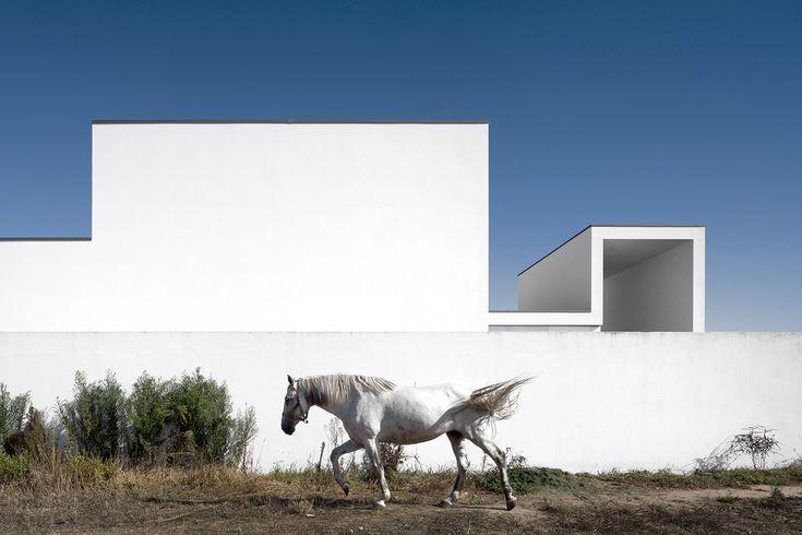 Aradas House,© Fernando Guerra   FG+SG