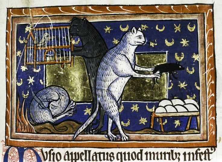 cats' habits Bestiary, England 13th century. Bodleian Library, MS. Bodl. 764, fol. 51r