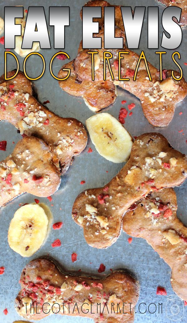 "Fat Elvis Homemade Dog Treats - The Cottage Market A homemade recipe for delicious dog treats that feature banana's ...bacon and peanut butter...they will get your doggies ""All SHOOK Up!!!"""