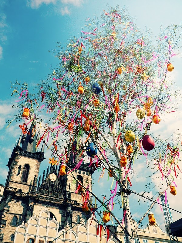 prague old town square easter: Easter Zapraszami, Town Squares, Czech Easter, Prague Easter, Trees Prague, Easter Eggs, Squares Easter, Easter Trees, Easter Marketing