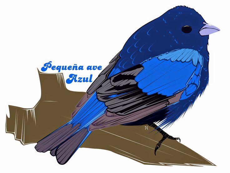 pequeña ave azul