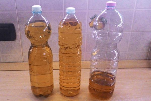A Genova preso un commerciante che vendeva olio di girasole colorato con clorofilla, spacciandolo per extra vergine. Condanne definitive fino a quasi 4 anni per la banda foggiana dedita all'adulterazione dell'olio d'oliva