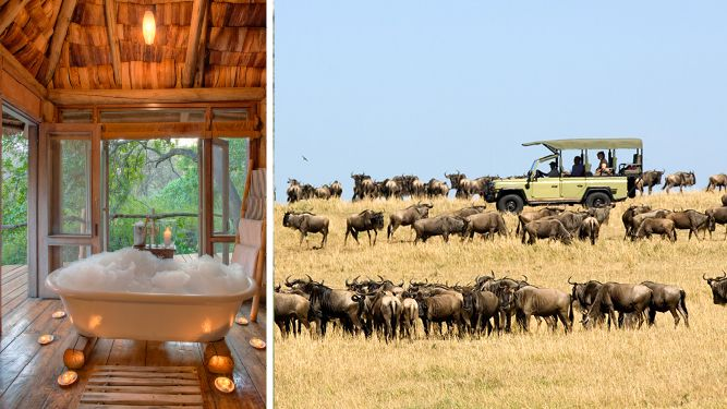 Gorgeous Lake Manyara Tree Lodge is on route to this leg of the Great Migration. #Africa #Tanzania #travel #summer