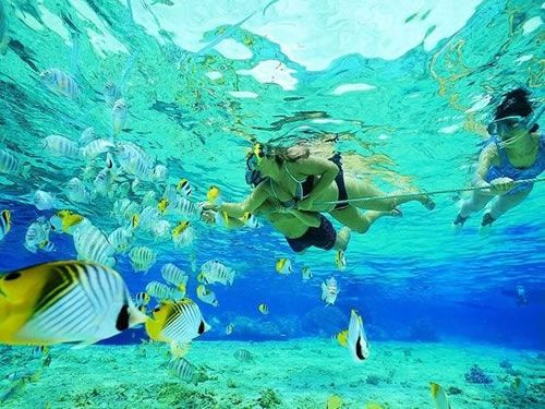 Snorkelling off Key Lago - Top 10 things to do in the Florida Keys  9 months to go!