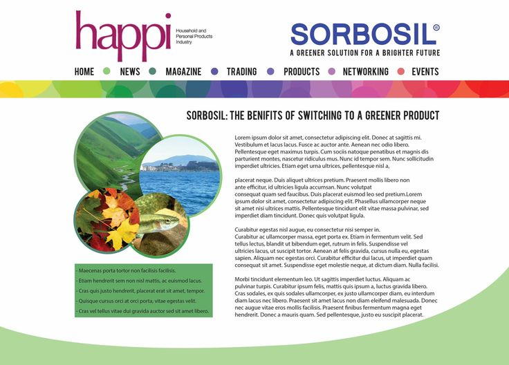 Sorbosil - web article design, live briefs module