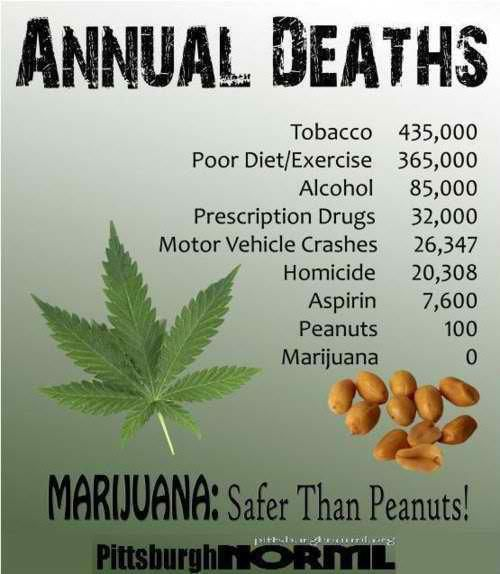 Medical Marijuana - I am unsure if these numbers are accurate, however I am aware that the side effects of medical marijuana are far less than those of many prescription meds. People need the ability to decide if this is the right medicine for them.. if it is effective and safe for their needs