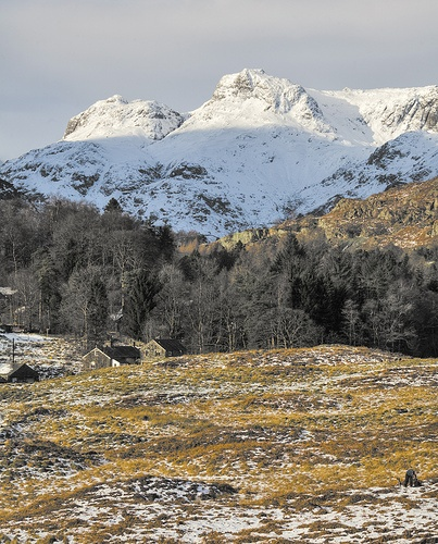 Langdale Pikes from Elterwater in the Lake District
