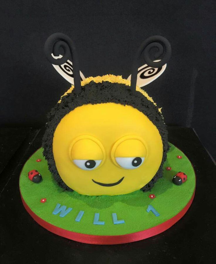 This was a cheerful wee chap we made for a little boys first birthday last week