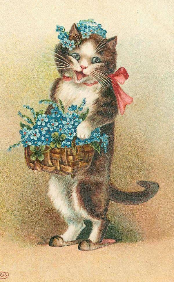 Крестной днем, открытки с юбилеем с кошками