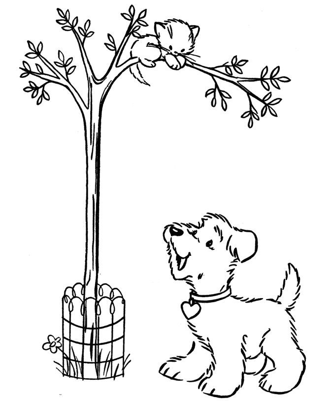 Cat In Tree Coloring Page Tree Coloring Page Dinosaur Coloring Pages Santa Coloring Pages
