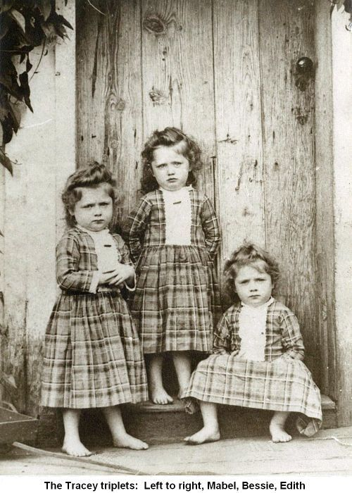 Tracey Triplets Mabel, Bessie & Edith. The look on their little faces!