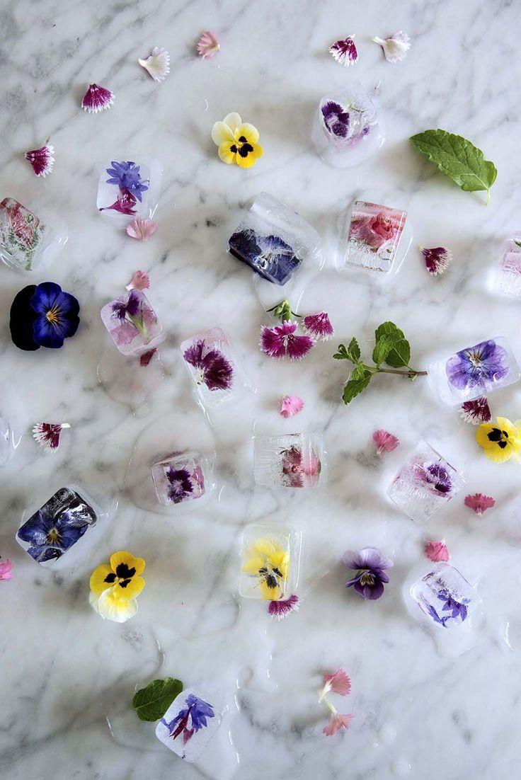 Frozen Flower Ice Cubes tutorial! Love these!!