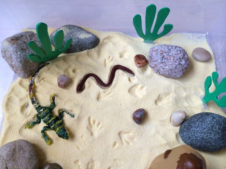 Use sand or semolina to create a desert in a bin. Talk to your child about hot desert climate and how animals lapart to the heat. Draw on semolina with your fingers. Make animal footprints and ask your child to guess the animal. Hide objects in semolina for the child to find them. Sensory bin ingredients: semolina, rocks, pebbles, foam cactus, foil lizard and scorpion, Play-Doh snake and Fisher-Price Little People camel.