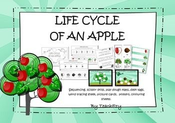 Life Cycle of an Apple Mini Unit: A beautiful resource to introduce young learners to life cycles.
