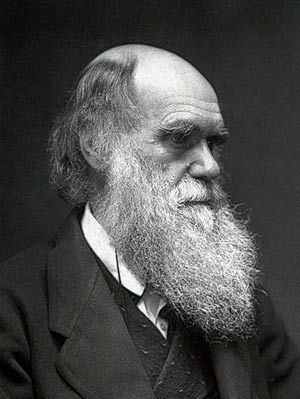 Charles Darwin, for his individual genius in collecting, collating and making sense of all that data.