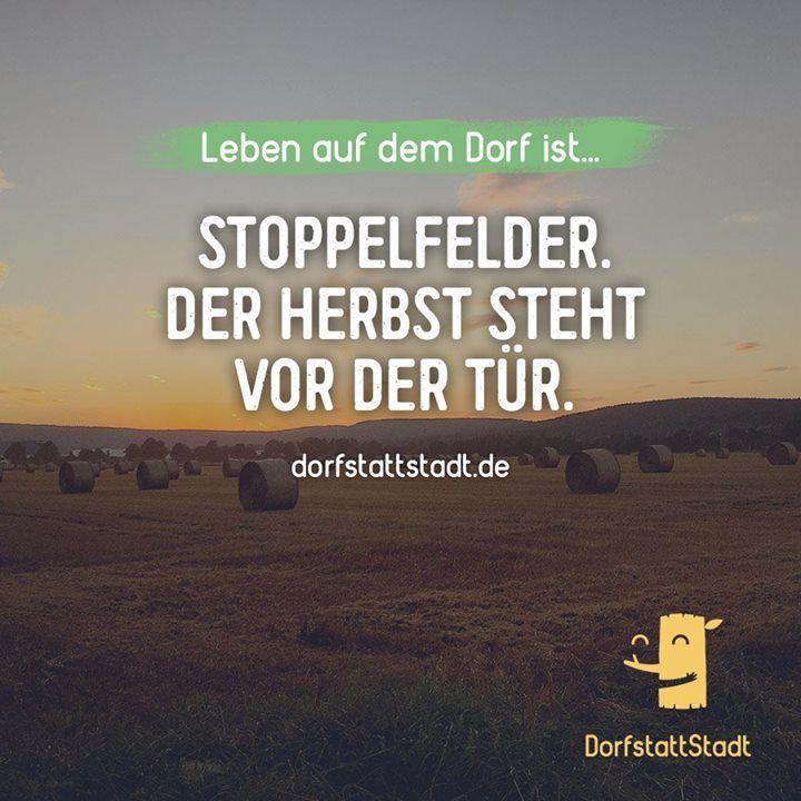 - http://ift.tt/2b7bTUr - #dorfkindmoment #dorfstattstadt