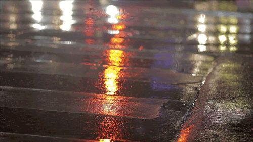#lol #humor #funny cute rain gif