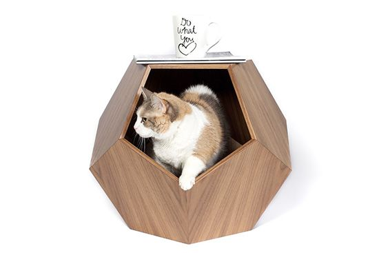 Handcrafted Modern Cat Beds from Pup & Kit