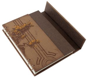 Dr Halsey's Journal from the Halo Reach special edition!  Cool looking cover design, with magnets!!  :D