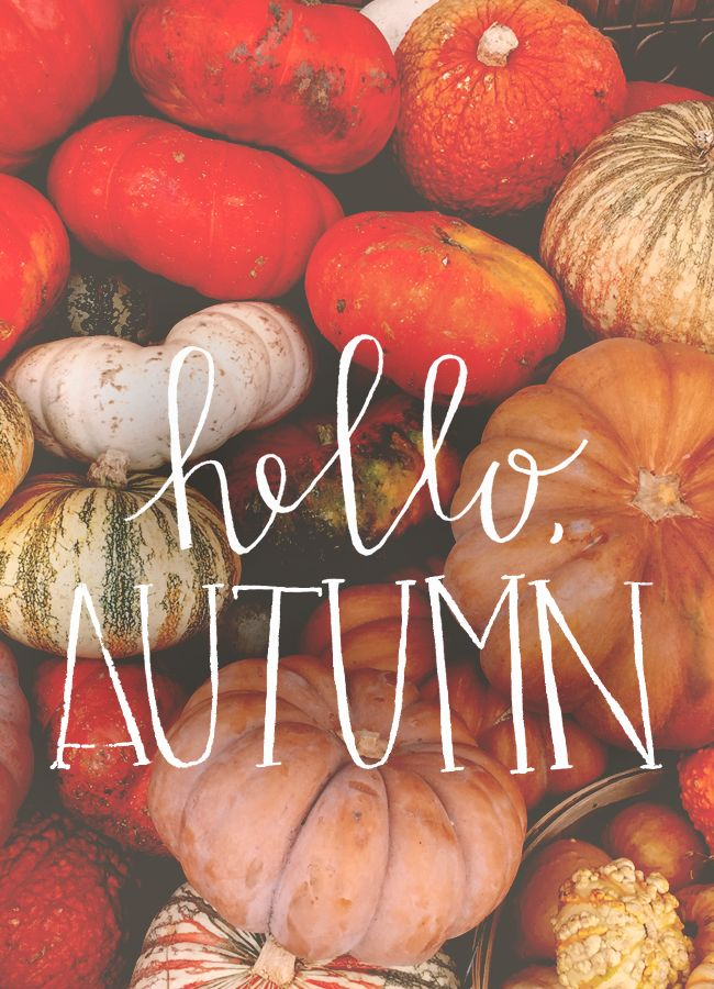 Hello autumn...I've missed you.