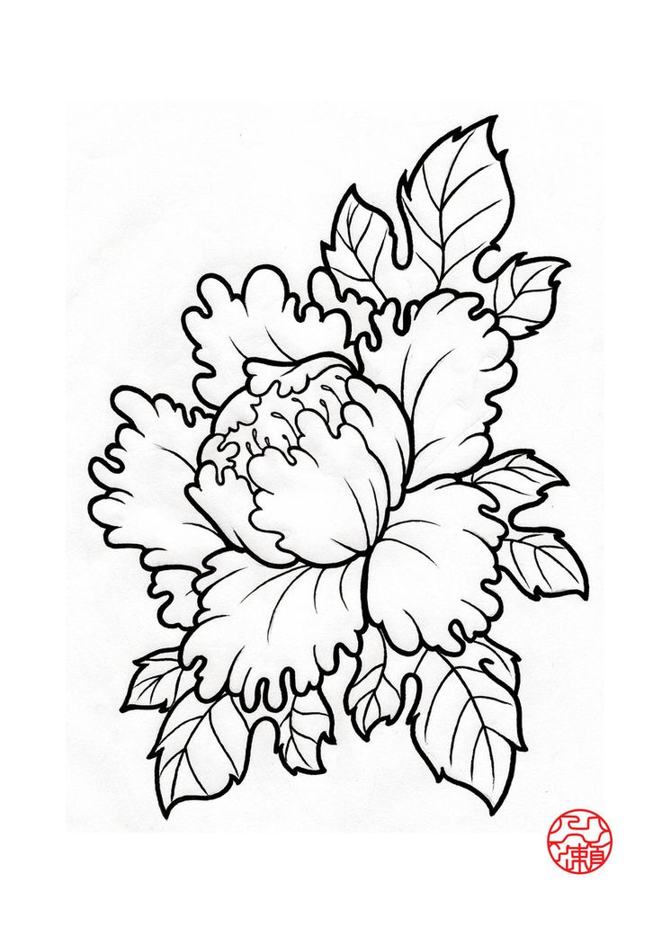 Peony Drawing Peonies drawing | Peonies tattoo, Japanese