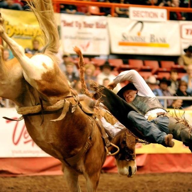 58 Best Saddle Bronc Riding Images On Pinterest Horse