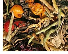 According to the United States EPA, yard trimmings and food residuals together constitute 23 percent of the U.S. municipal solid waste stream. That's a lot of waste to send to landfills when it could become useful and environmentally beneficial compost instead!