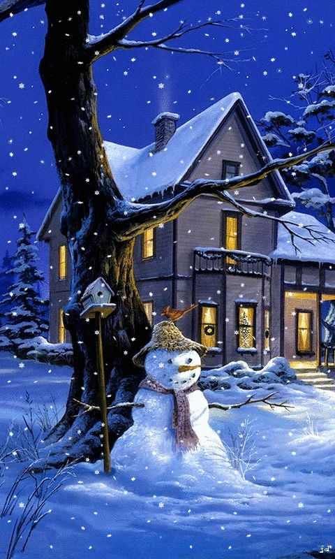 Download Animated 480x800 «Christmas night» Cell Phone Wallpaper. Category: Holidays