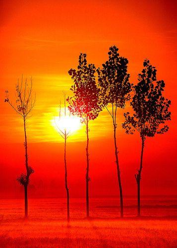 The Rising Sun.  by Poras Chaudhary.  Thanesar,Haryana,IN.