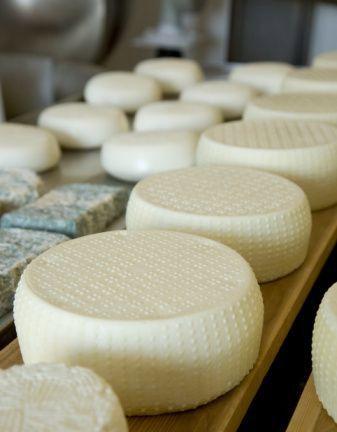 Receitas de vários queijos