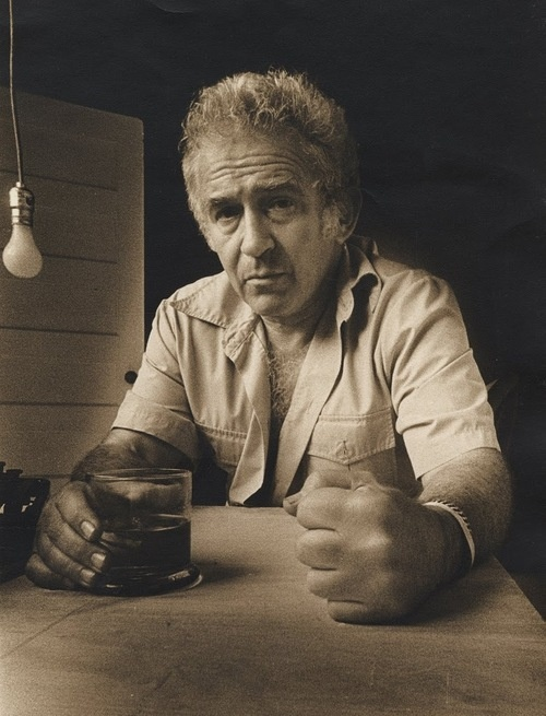 Every one of my books had killed me a little more  ~Norman Mailer