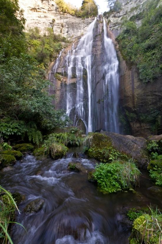 Shine Falls, Napier: See 24 reviews, articles, and 12 photos of Shine Falls, ranked No.9 on TripAdvisor among 57 attractions in Napier.
