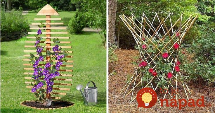 Takto zvýrazníte ich krásu: 25 krásnych nápadov, ako pestovať popínavé kvety!