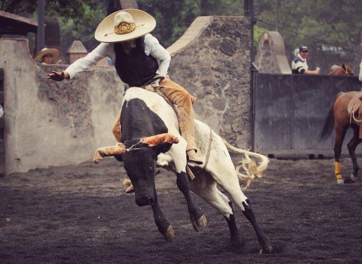 Montar un toro