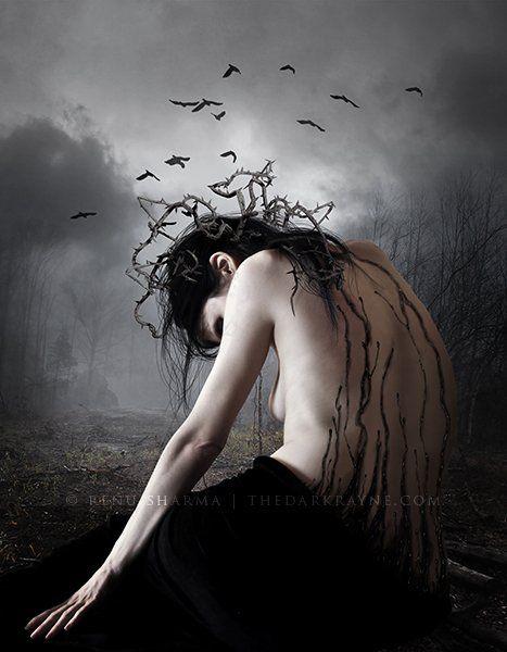 ... Szárnyából tépkedi tollait, és sír ...