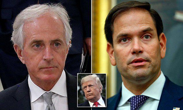 Republican leaders win over Bob Corker and Marco Rubio on tax cut bill