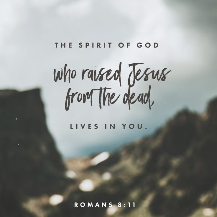 The Spirit of God, who raised Jesus from the dead, lives in you. And just as God raised Christ Jesus from the dead, he will give life to your mortal bodies by this same Spirit living within you.