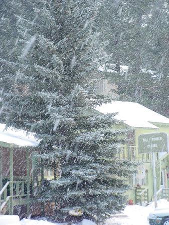 Winter in Cloudcraft, NM