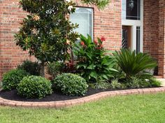 Landscaping Border Ideas | ... Landscaping, Stamped Concrete Borders and Landscape Lighting Projects
