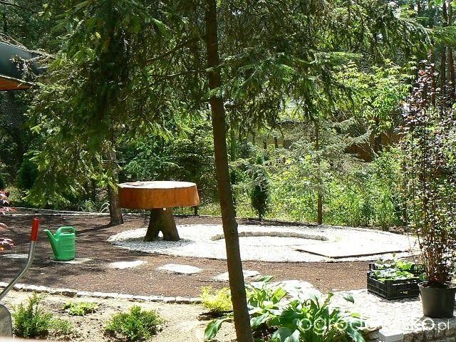 Miejsce na ognisko - ognisko w ogrodzie - strona 6 - Forum ogrodnicze - Ogrodowisko