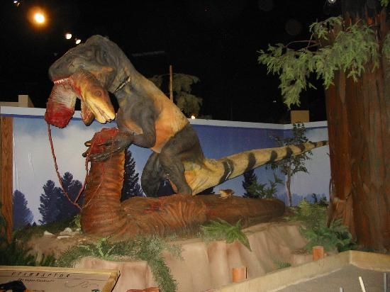 Dinosaur Discovery Museum: Cool! Grand Junction to Fruita, CO, USA