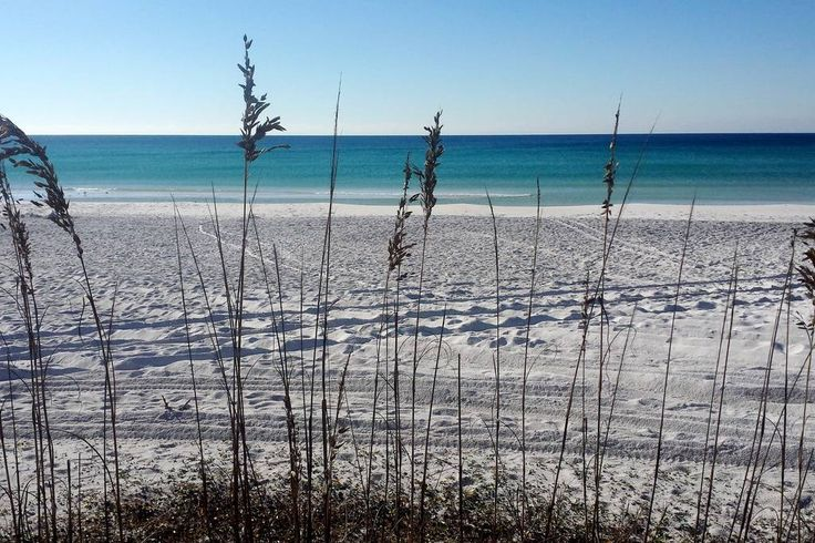 Apartment in Santa Rosa Beach, United States. Private luxury apartment located in gated subdivision along historic Hwy 30A. Single bedroom, bath and efficiency kitchen, with accommodations for family of 4. Surrounded by Topsail State Park and the world famous beaches of the Emerald Coast  Per...