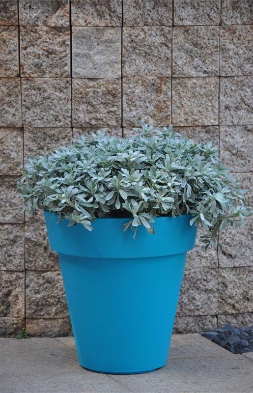 Eden 38cm Classic Blue Plastic Pot #lightweight #indoor #outdoor #brightblue