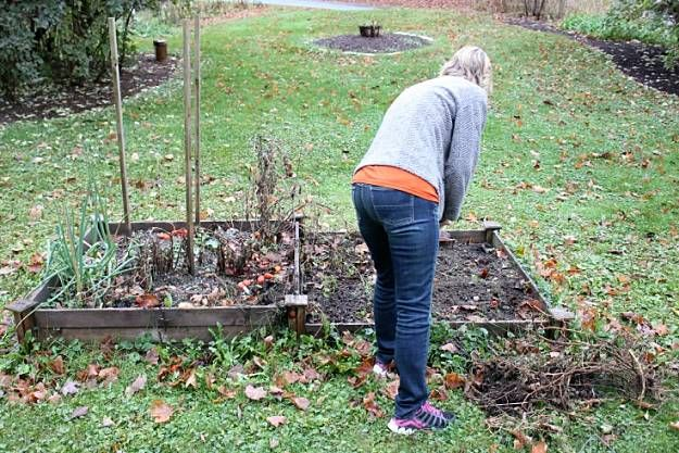 Fall And Winter Garden Clean Up | Things You Should Be Doing This Fall And Winter Garden Season