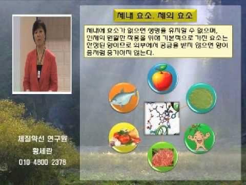 발효 효소의 효능과 효소의 필요성 - YouTube
