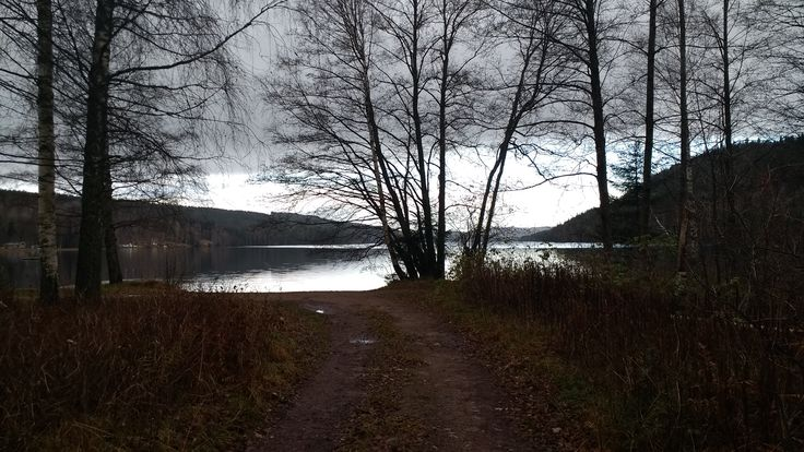 Path to Knarrbysjön, Fengersfors, Sweden