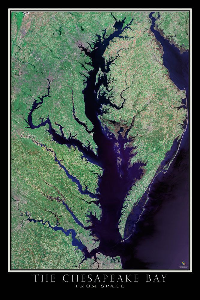Chesapeake Bay Virginia Maryland Satellite Poster