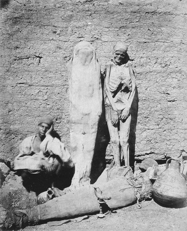 Man selling mummies in Egypt, 1875.it was trendy in England o have mummy parties where you got to unwrap a mummy and see if there was any treasure to be had.